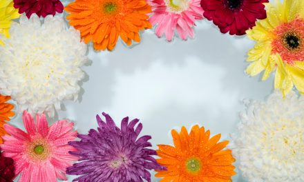 Flower Therapy: The most type of beautiful therapy you need to try ASAP!